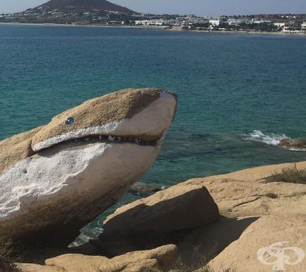 Тази скална акула се намира в Наксос, Гърция