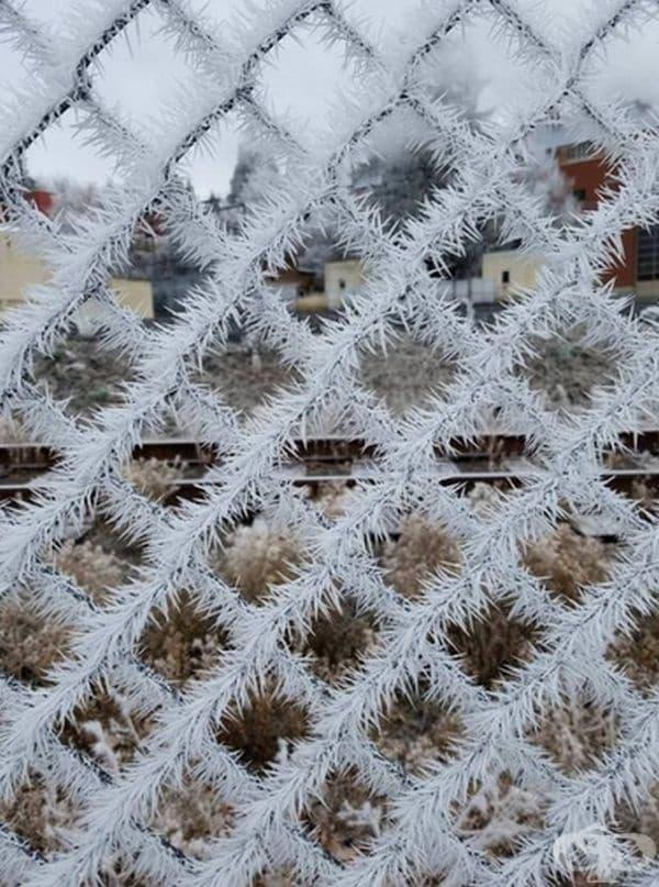 Замръзване.