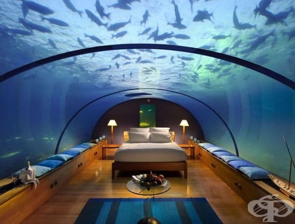 Conrad Maldives, Остров Рангали