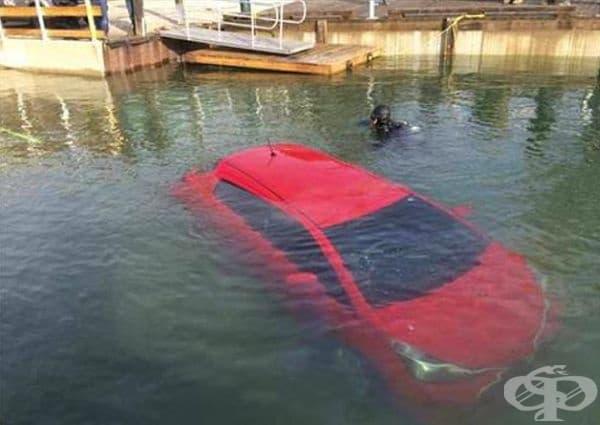 Явно е трябвало да поплуват.
