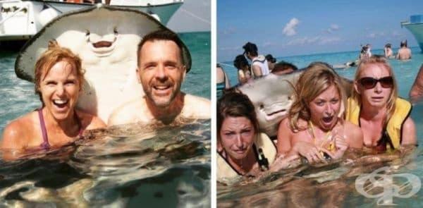 Никога не е било по-трудно да се каже коя снимка е по-епична.