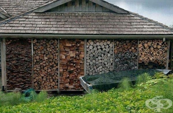 Когато сте експерт в подредбата на дървен материал.