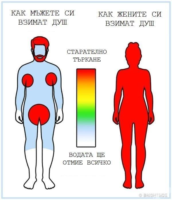 16 разлики между жените и мъжете, представени в инфографики