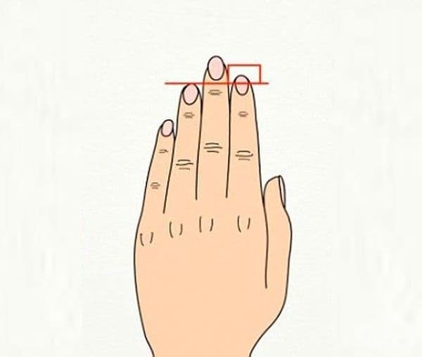Британско изследване твърди, че дължината на пръста се дължи на количеството тестостерон в човешкото ембрионално развитие, а хормоналната система влияе върху здравето на сърдечносъдовата система.