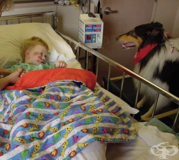 """""""Кучето прави всичко възможно, за да ме развесели, след като ме блъснаха с кола като дете."""""""