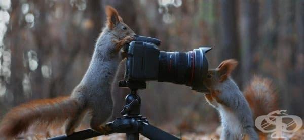 Фотографът и моделът