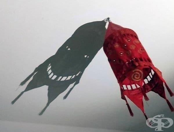 Снимки, отразяващи сенки, по-интересни от обектите, на които принадлежат - изображение
