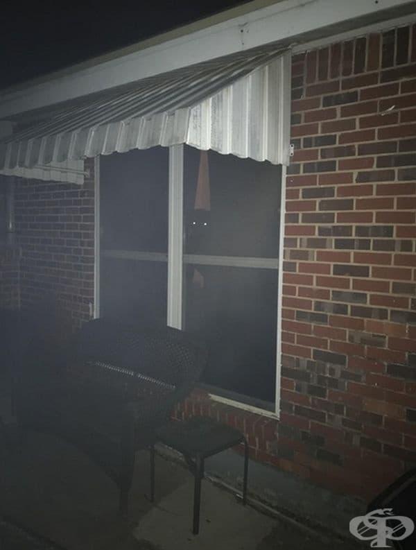 Изглежда страховито, но това е просто куче, което наблюдава през прозореца късно вечер.