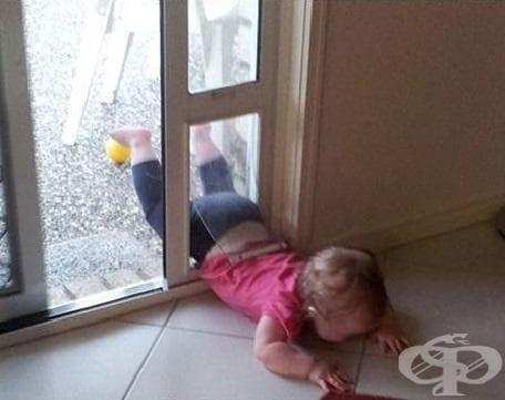 """""""Не можа да премине през вратата за кучето"""""""