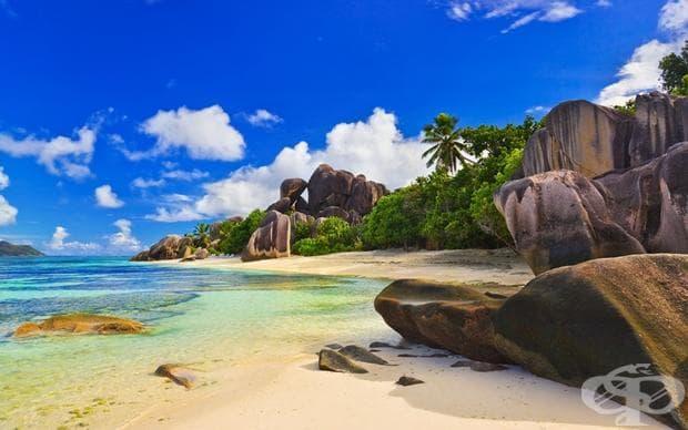 Сейшелските острови са архипелаг от 115 острова в Индисйки океан. Известни са със своите плажове, коралови рифове, възможности за гмуркане, природни резервати и редки диви животни.