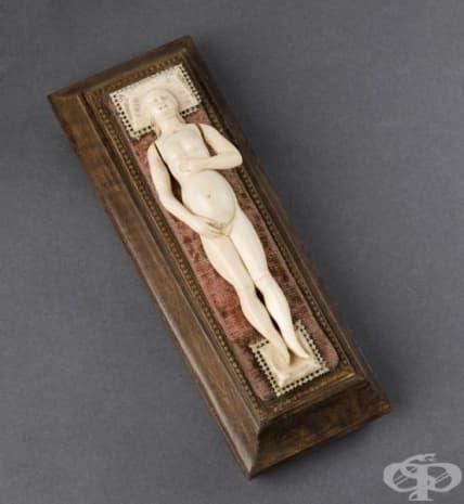 Анатомичен модел на бременна жена, изработен от слонова кост