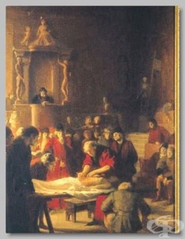 Картината на Мондино де Кузи от 1318 година е представила момент от анатомичен преглед, проведен в Болония.