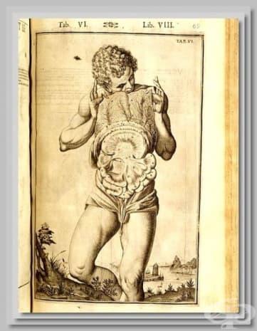 Картина от 1627 година на Джулио Касери.