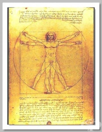 """Прочутият """"Витрувиански човек"""" на да Винчи, създаден, за да покаже съвършенството на човешкото тяло."""