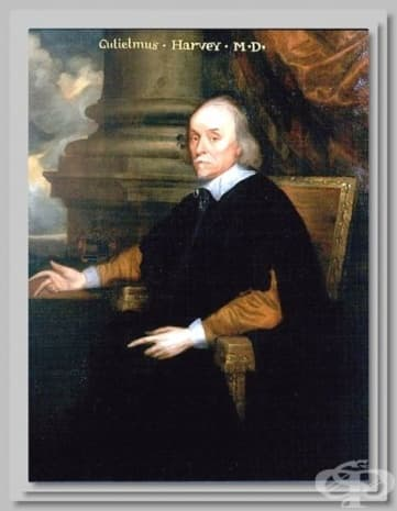 Портрет на Уилям Харви.