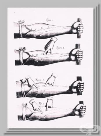 """""""Физиология на кръвообращението"""" - картина от """"De motu cordis"""" на Уилям Харви."""