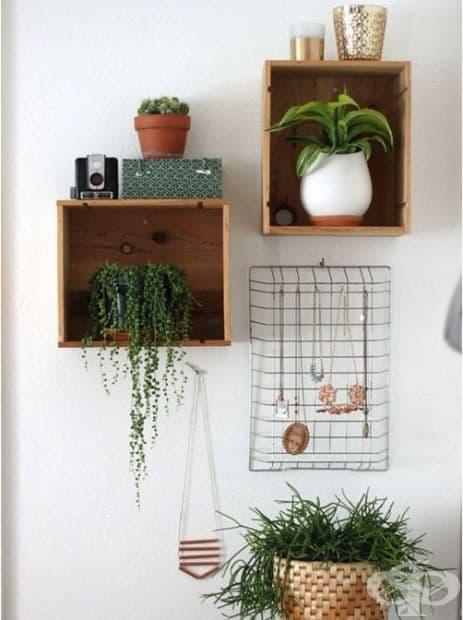 Дом за вашите стайни растения