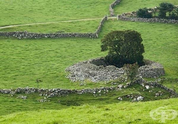 Пещерите Къшендън, Северна Ирландия