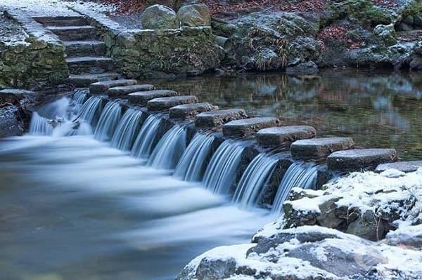 Горският парк Толимор, Северна Ирландия (горите на Севера)