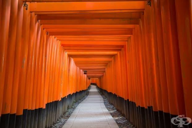 Храмът Инари Фушими, Япония