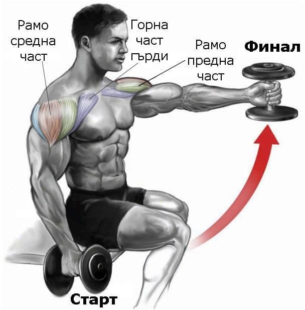 Повдигане на дъмбел пред тялото от седеж