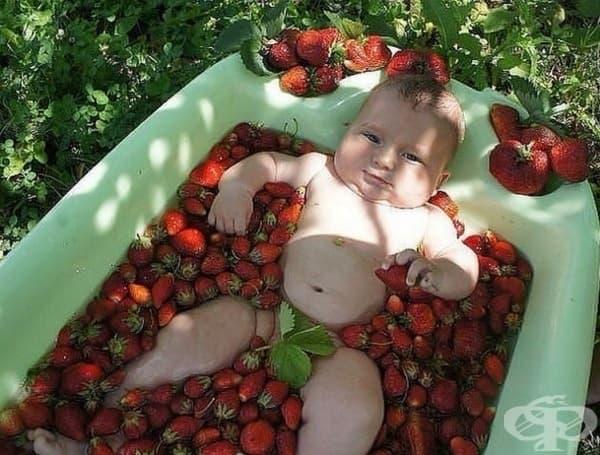 Всички ягоди са мои! МОИ!