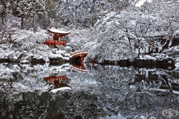Храм в Киото, Япония, скрит в снега.