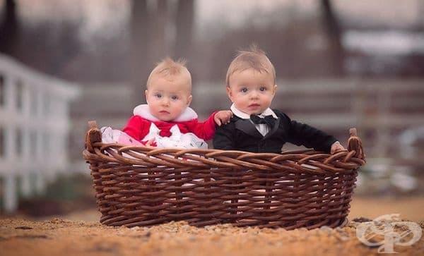 Другата половина - или какво е да имаш близнак