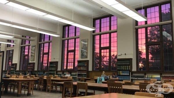 """""""Кой би предположил, че може да наблюдава такъв невероятен залез от библиотека?"""""""