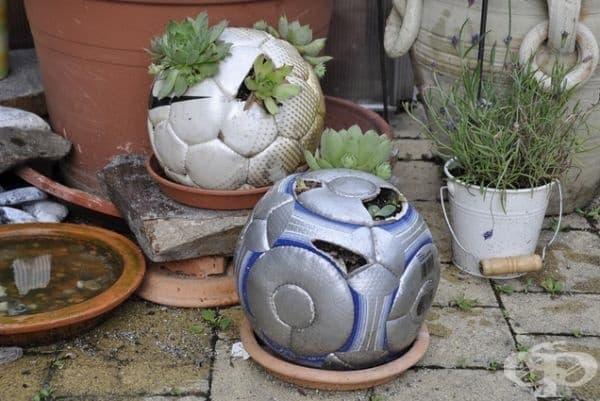 Старите футболни топки са идеални за малки растения.