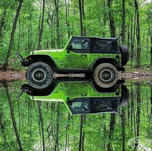 Пътуване с непрестанно усещане на свежест и гора.