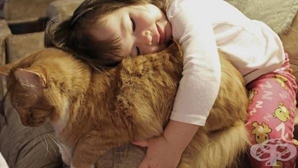 Снимка на истинската любов. Не сте ли съгласни?