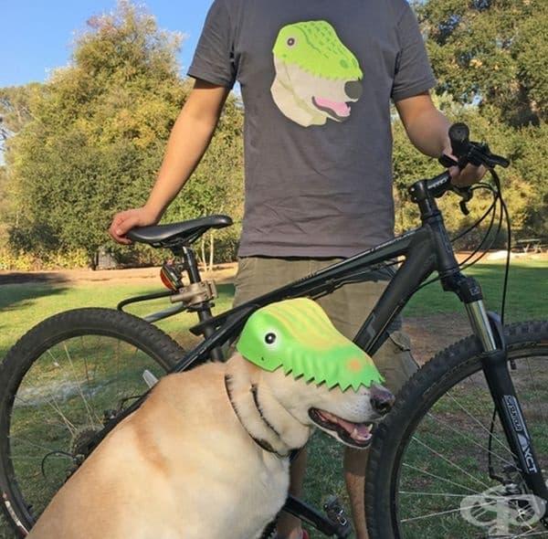 Всички имат кучета, а този човек?