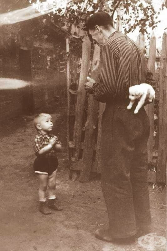 Няколко мига преди щастието, 1955 г.