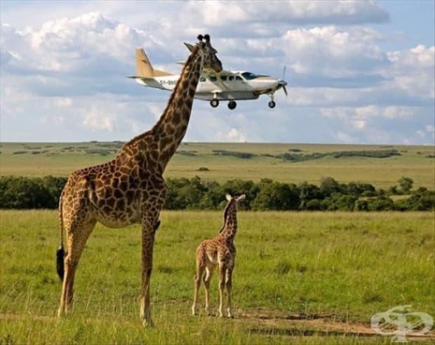 Просто си играя със самолет и сина ми