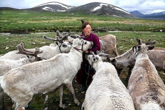 Хьовсгьол, Монголия