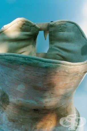 Един от корсетите, носени от Кало