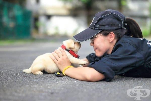 Вижте най-сладките полицаи в света