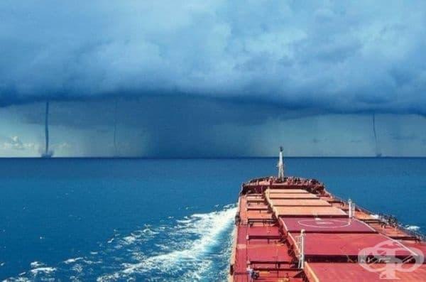 Тази снимка доказва, че моряците са безстрашни.
