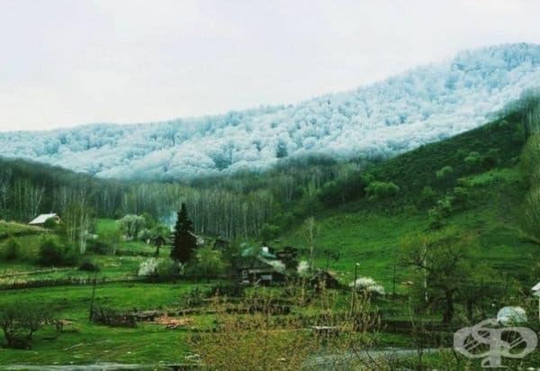 Уникална снежна лавина в Алтай.
