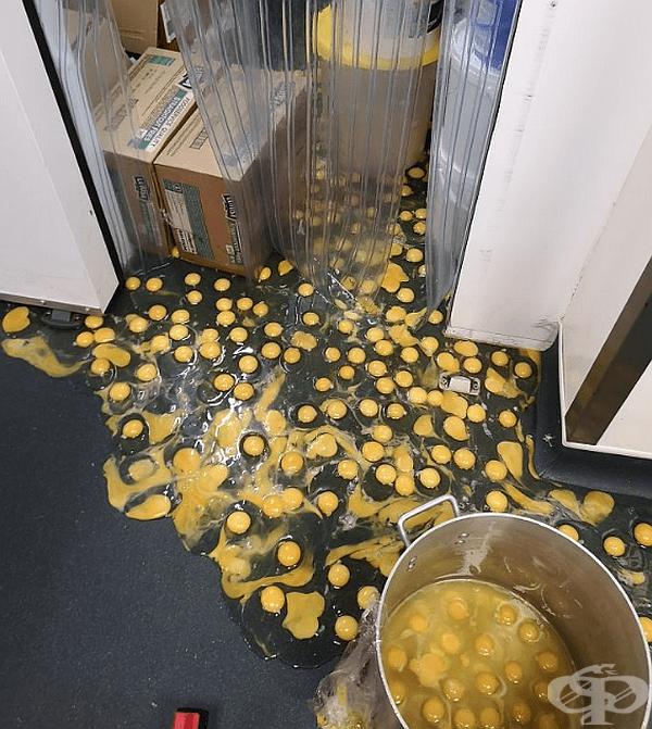 """""""Изпуснах контейнера с яйца 10 минути преди края на смяната си."""""""