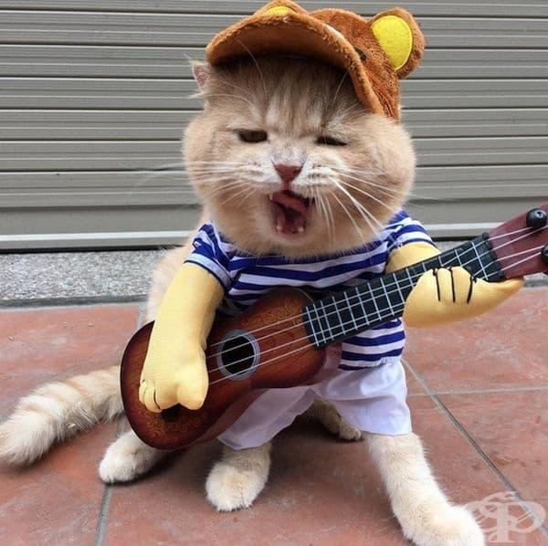 Умее да свири.