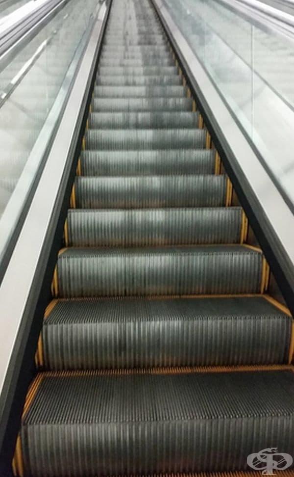 Този ескалатор е много по-мръсен от страната на качващите се клиенти, отколкото от страната на слизащите.