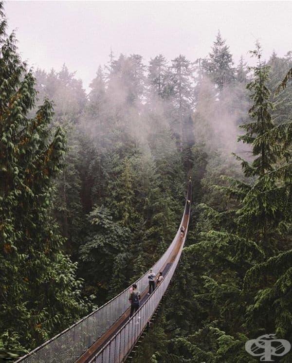 Висящ мост Капилано, Ванкувър