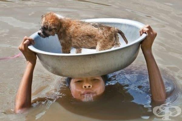 Жената успя да спаси кученцето.