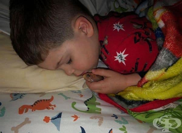 """""""Синът ми не искаше да се раздели с рибката си и я приюти в леглото."""""""