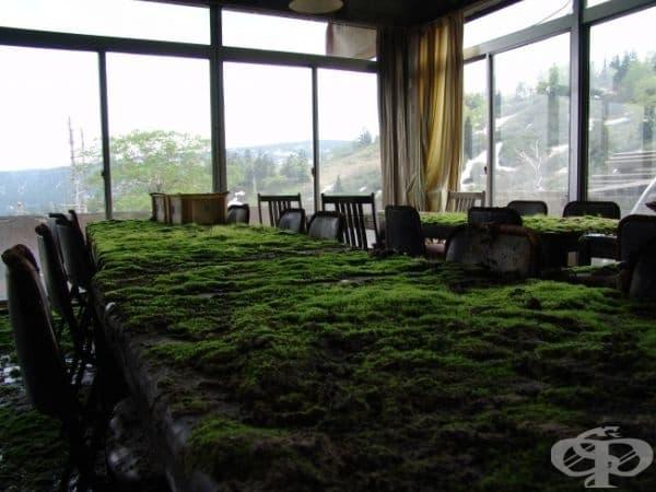Изоставен хотел, Япония.