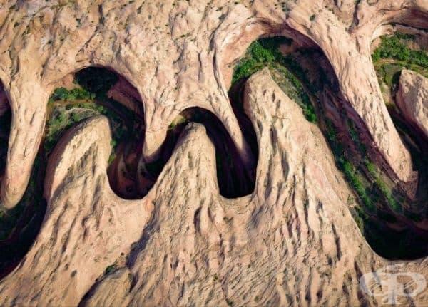 Поява на зелена растителност по бреговете на река, която се намира в зоната на криволичещ каньон, Юта, САЩ.