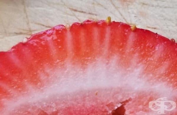 Белите линии свързват всяко отделно зрънце със сърцевината на ягодата.