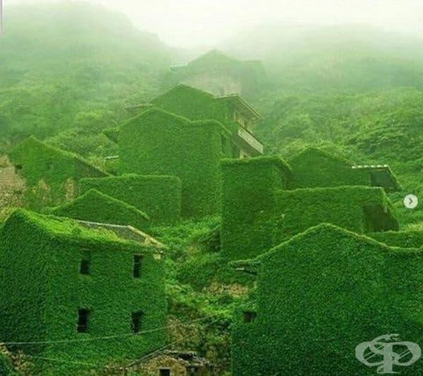 Остров Gouqi, Китай